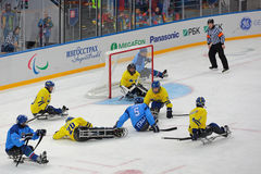 Sledge hockey Stock Photo
