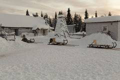 Sledges in the winter Stock Image