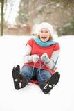 sledging多雪的妇女森林地的前辈 库存照片