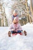 sledging多雪的森林地的男孩女孩 免版税库存图片