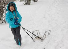 Sledging in a blizzard Stock Photo