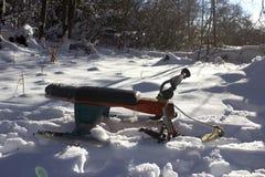 Sledging op de sneeuwhellingen in het bos in de winter Rust in het hout en het sledding stock foto's