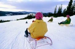 Sledging para los adultos en Noruega fotografía de archivo