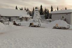 Sleeën in de winter Stock Afbeelding
