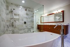 Sleek bathroom with freestanding bathtub and walk in shower stock photography