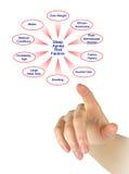 Sleep Apnea Risk Factors. Diagram of Sleep Apnea Risk Factors Royalty Free Stock Photos