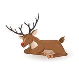 Sleep cartoon reindeer Stock Images