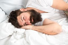 Sleep disorders concept. What a long night. Man bearded hipster having problem with sleep. Guy lying in bed try to relax. And fall asleep. Relaxation techniques royalty free stock photos