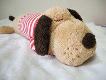Sleep dog doll on a bed Royalty Free Stock Photography