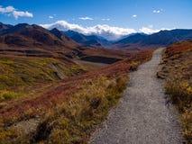 Sleep door Autumn Tundra, Berguitzicht, het Nationale Park van Denali royalty-vrije stock afbeeldingen
