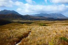 Sleep door hooglandweiden in Tasmaanse bergen Royalty-vrije Stock Fotografie