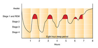 Sleep graph Royalty Free Stock Image
