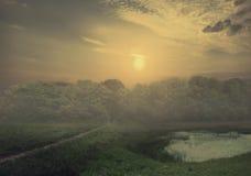 Sleep in het moerasland Stock Fotografie