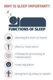 Sleep infographic. Importance of sleep, functions. Flat vector illustration Stock Photos