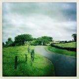 Sleep in Kula op Maui in Hawaï royalty-vrije stock afbeeldingen