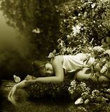 Sleep near by creek Stock Image