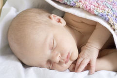 Sleep of newborn Stock Image