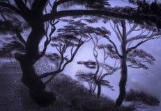 Sleep pine forest Royalty Free Stock Photo