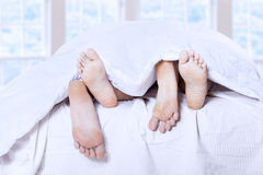 Sleep together 1 Stock Photos