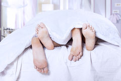 Sleep together Royalty Free Stock Photos