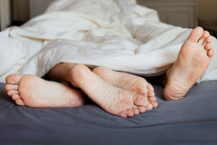 Sleep together stock images