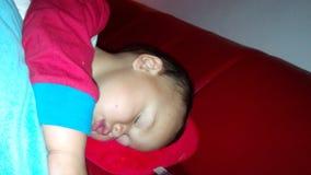 Sleep. Tycho sleeping in big bed Royalty Free Stock Photos