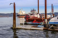 Sleepbootboten in het platteland dat van Oregon worden vastgelegd royalty-vrije stock afbeelding