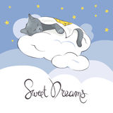 Sleeper Kitty on the clouds under a blanket Royalty Free Stock Image