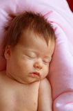 Sleeper newborn baby Royalty Free Stock Photo