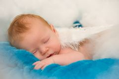Sleeping Angel. A baby sleeping while dressed up as an angel Royalty Free Stock Photos
