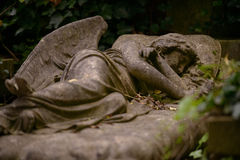 Sleeping Angel, Highgate Cemetery, London Stock Photography