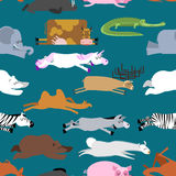 Sleeping animals seamless pattern. Seal and deer. Crocodile  Royalty Free Stock Image