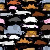 Sleeping animals seamless pattern. Seal and deer. Crocodile and Stock Photos
