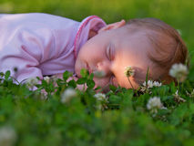 Sleeping baby. Infant sleep on a green grass royalty free stock images