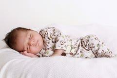 Sleeping baby. A 4 weeks old baby boy fast asleep on a poser Stock Photo