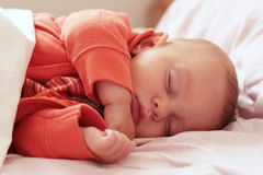 Sleeping baby. Image of an adorable sleeping baby of four months Royalty Free Stock Images