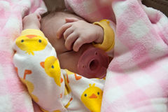 Sleeping Baby. Baby newborn girl around two to three months of age wearing a duck patterned one piece outfit while sleeping on a couch. Pacifier in mouth royalty free stock photo