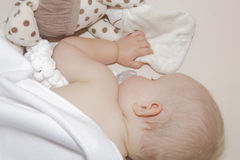 Sleeping baby. Laying in cot under white fleece blanket royalty free stock image