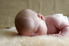 Sleeping Baby. Baby sleeping on a sheepskin rug Stock Image