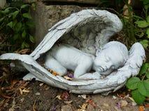 Sleeping baby angel Stock Photos