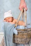 Sleeping baby in basket Royalty Free Stock Photo
