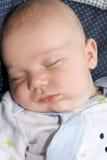 Sleeping Baby Boy Stock Photography