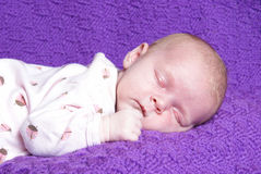 Sleeping Baby Girl. A one month old baby girl is sleeping peacefully Stock Photography