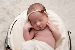 Sleeping Baby Girl in Bucket Royalty Free Stock Images
