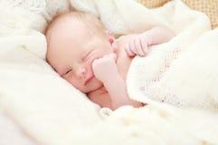 Sleeping baby girl. Newborn sleeping baby girl on a white blanket Stock Image