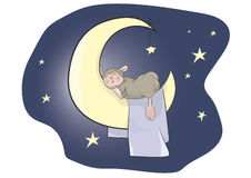 Sleeping baby lamb Royalty Free Stock Images