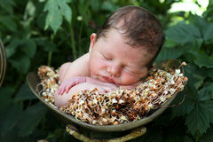 Sleeping baby outside Stock Image