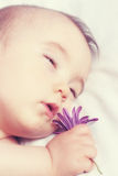 Sleeping a baby in warm colors and holding a flower. Stock Photos