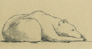 Sleeping bear. A relaxing bear - Artwork made with grey pencil on sepia-coloured paper royalty free illustration