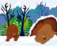 Sleeping bear. Vectors illustration shows a bear sleeping in the burrow stock illustration